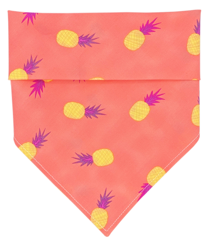 Pineapple Express Dog Bandana