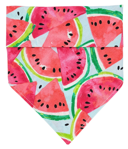 Watermelon Sugar Dog bandana