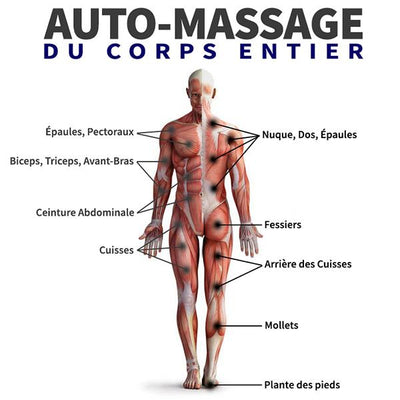 Balle de massage <br> Acupression Qi