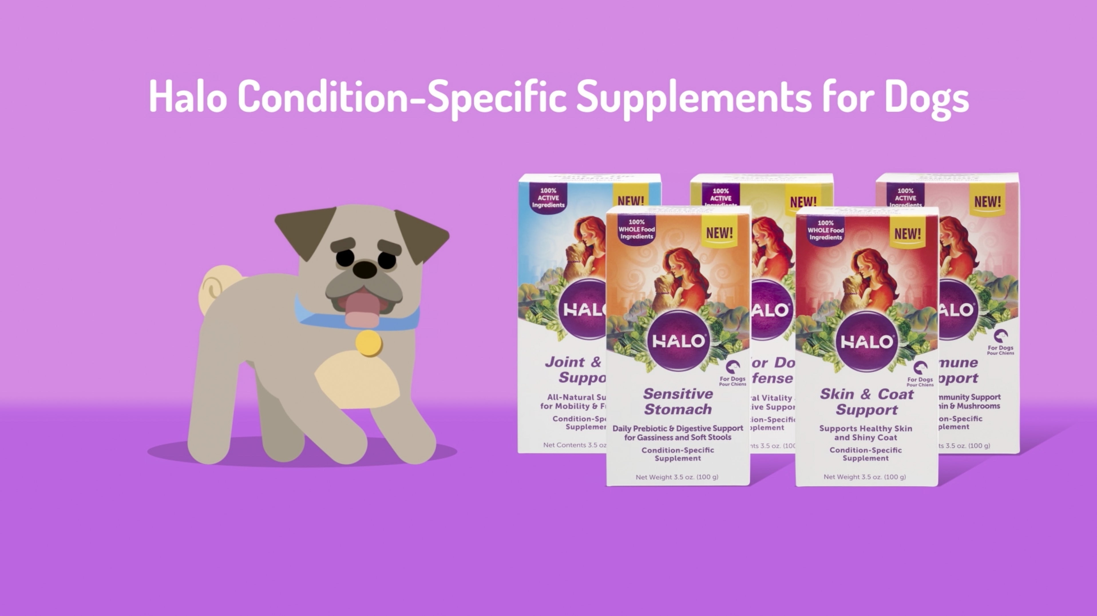 Condition-Specific Supplements for Dogs