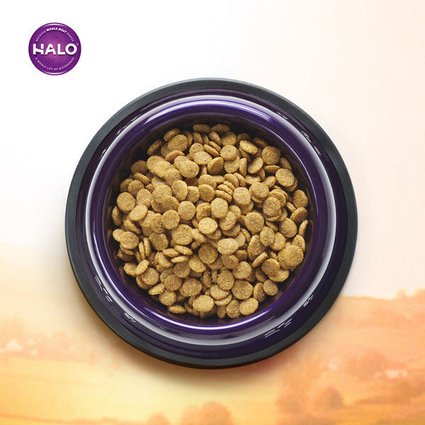 Halo Adult Dog - Holistic Grain Free Surf & Turf Recipe