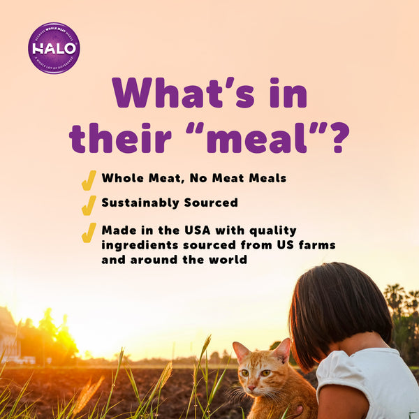 Halo Cat Sensitive Stomach - Grain Free Quail & Garden Greens Recipe Pâté