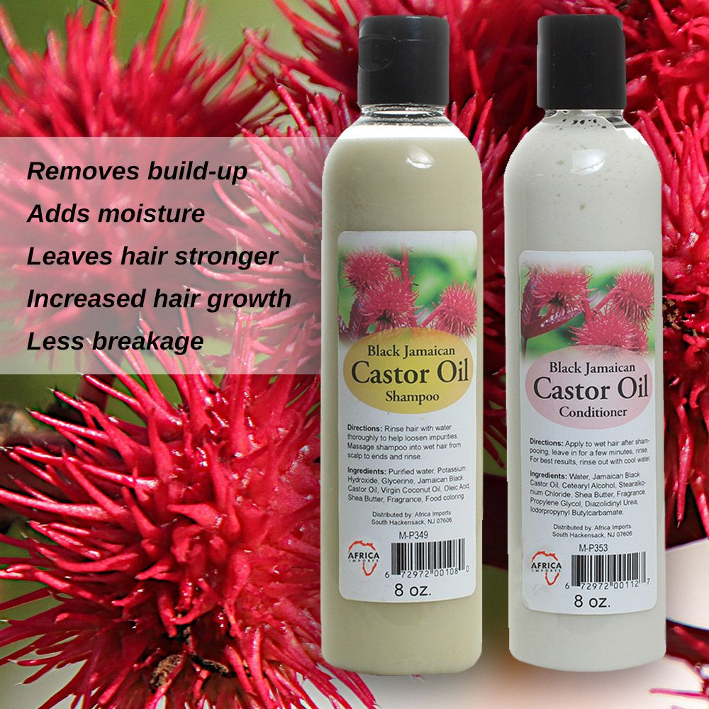 Black Jamaican Castor Shampoo and Conditioner Set (236 ml/ 8 oz each bottle) and 473ml of 100% Pure Organic Jamaican Black Castor Oil