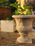 Small French Inspired Urn