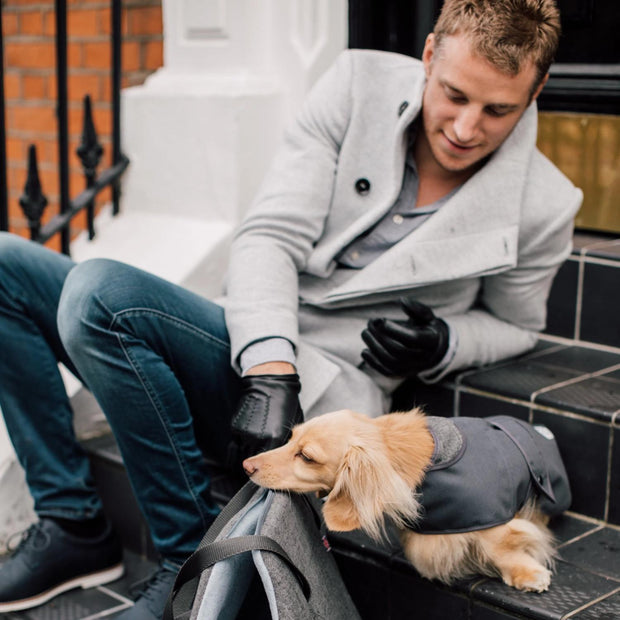 'The James' Charcoal Grey Dog Coat