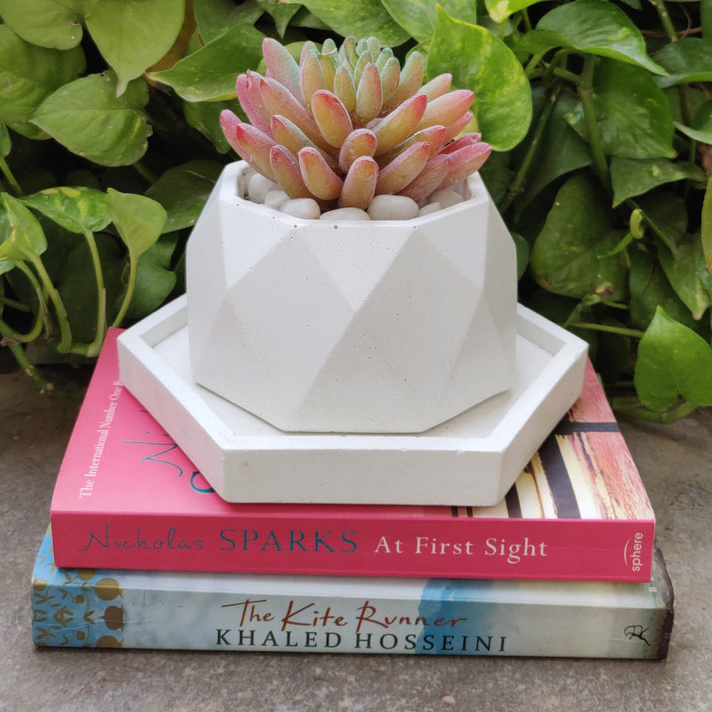 Octa fun concrete planter white vara store 1