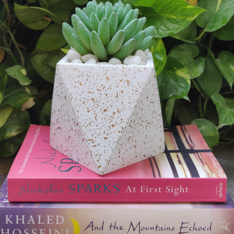 Concrete speckled finish desk planter white vara store 1