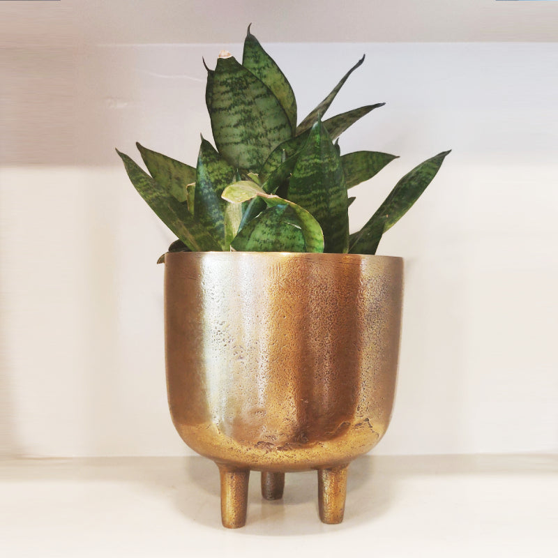 Antique gold finished planter with legs vara store 1