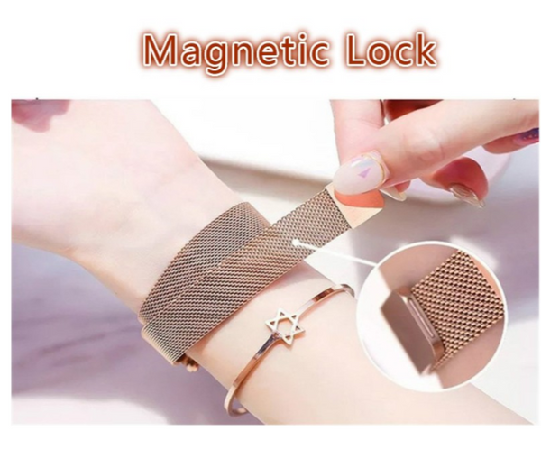 Goose Designed Women Magnetic Watch