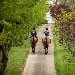 Horse Riders Science Supplements