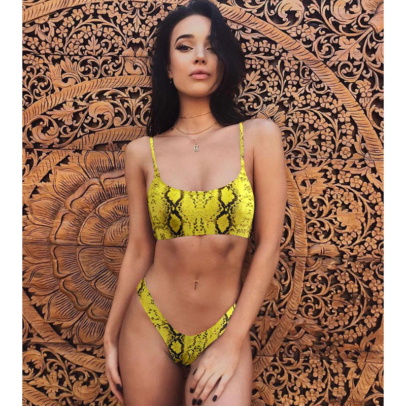 Leopard Bikinis 2019 Micro Bikini Set Push Up Thong Biquini High Cut Swimwear Women Mini Swimsuit Female Bathing Suit