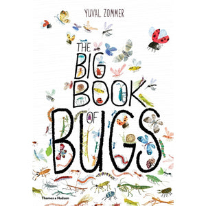 The Big Book of Bugs | Children's Picture Book on Bugs and Spiders