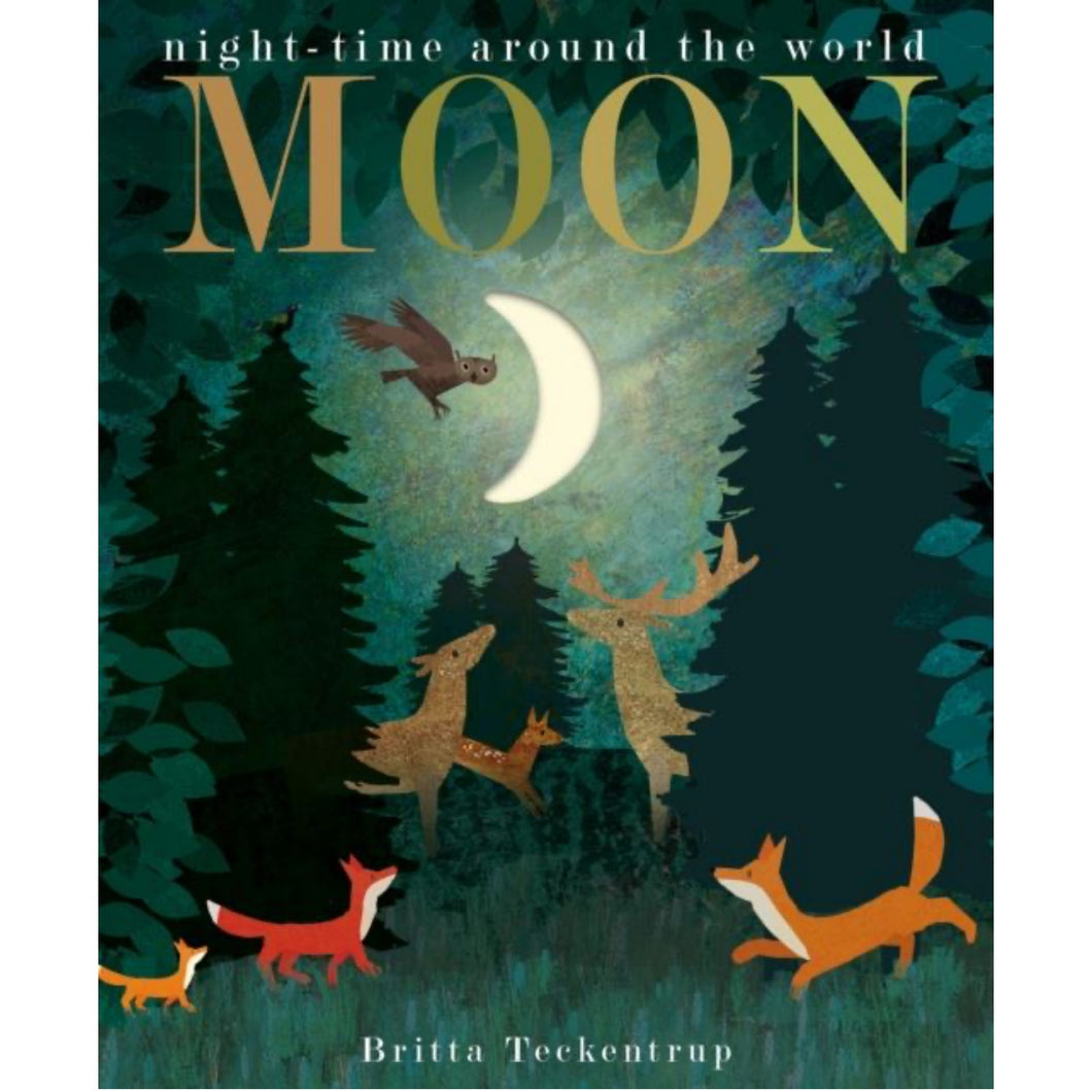 Moon: Night-Time Around The World | Children's Book on Nature