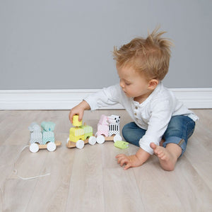 JaBaDaBaDo Pull Along Animal Stacker | Wooden Toddler Activity Toy | Lifestyle – Boy Playing | BeoVERDE.ie
