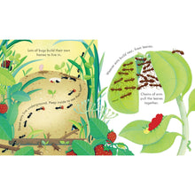 Load image into Gallery viewer, Peep Inside Bug Homes | Children's Book on Nature