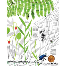 Load image into Gallery viewer, 1001 Ants | Children's Picture Book on Ants