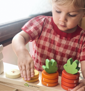Tender Leaf Counting Carrots | Hand-Crafted Wooden Educational Toy | Girl Counting | BeoVERDE.ie