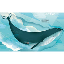 Load image into Gallery viewer, Deep in the Ocean | Children's Picture Book on Marine Life | Abrams Appleseed | Sample Page Whale | BeoVERDE.ie