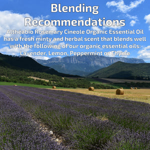 Organic Rosemary Cineol Essential Oil Aromatherapy | How To Blend | BeoVERDE.ie