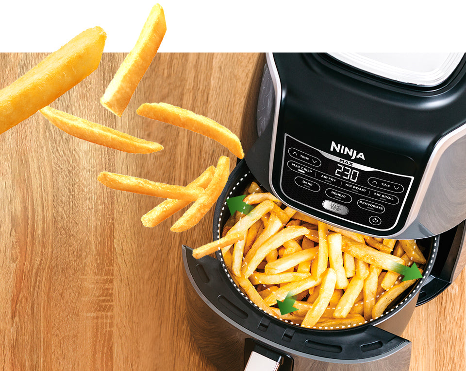Airfryer fries