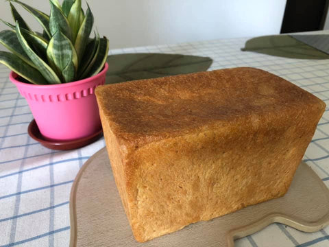 Loaf of bread homemade before slicing