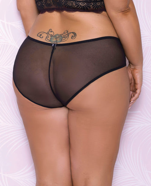 Scallop Lace & Mesh Hipster Panty- Plus Size - XSexStore