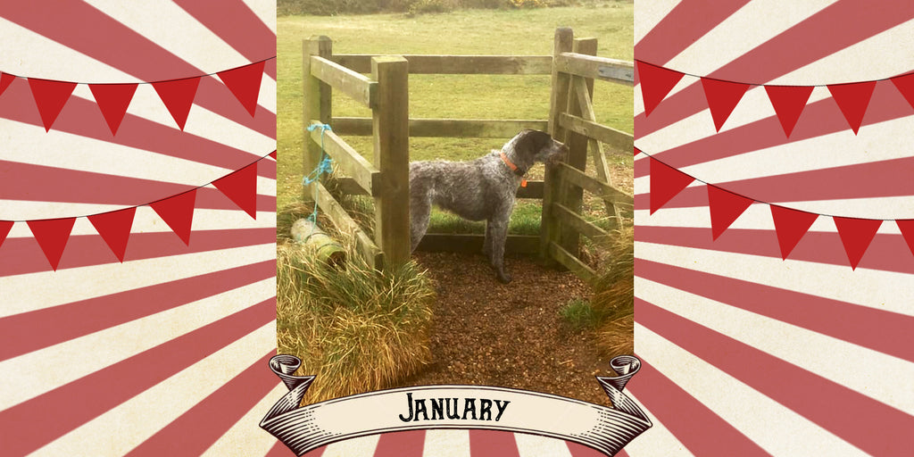 January - Claire Hayhurst & Boo