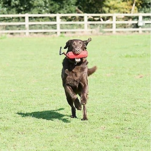 Red - Lifestyle - Clix Training Dummy For Dogs