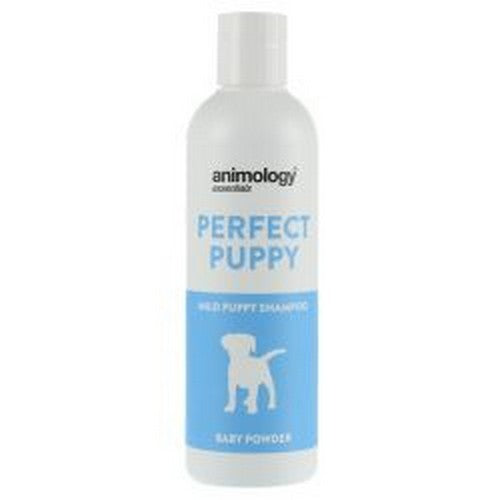 Front - Group55 Animology Essential Perfect Puppy Liquid Shampoo