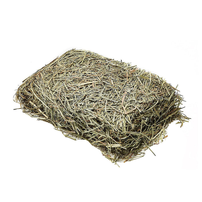 May Vary - Front - Versele Laga Mountain Hay With Dandelion