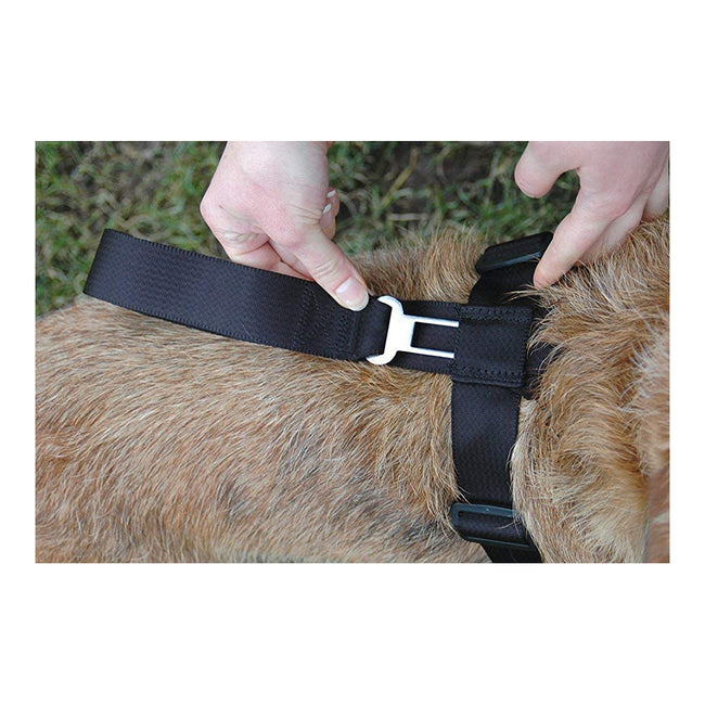 May Vary - Side - Clix CarSafe Dog Seatbelt Harness