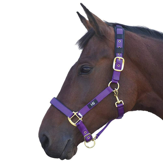 Purple - Front - Hy Deluxe Padded Head Collar