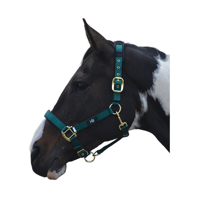 Bottle Green - Front - Hy Deluxe Padded Head Collar