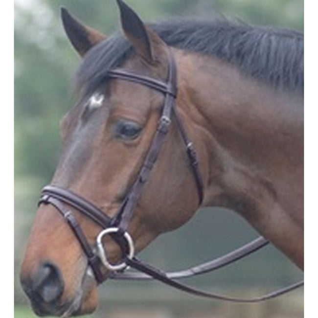 Havana - Front - Cottage Craft Oxford Bridle With Rubber Reins