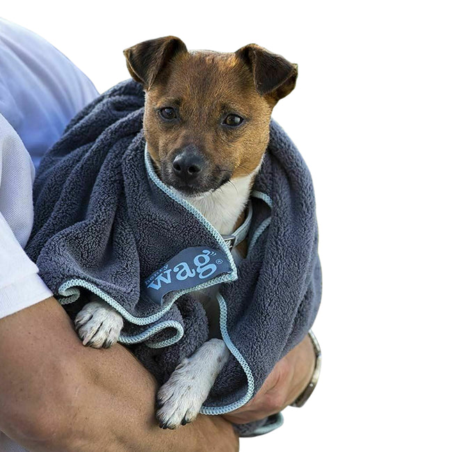 Grey - Front - Henry Wag Microfibre Pet Towel