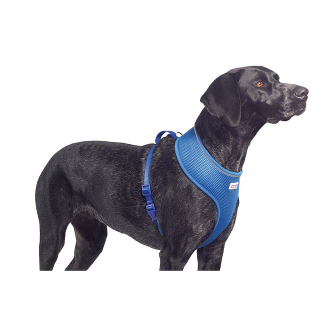 Blue - Front - Ancol Pet Products Comfort Mesh Dog Harness
