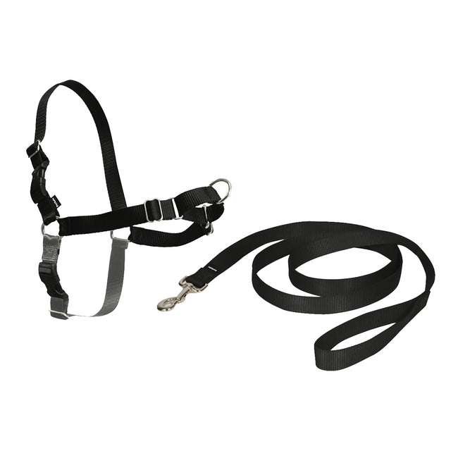 Black - Front - Petsafe Easy Walk Dog Harness