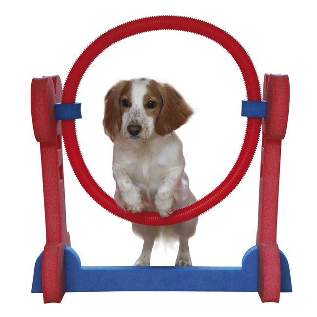 Red-Blue - Front - Rosewood Small Dog Agility Hoop