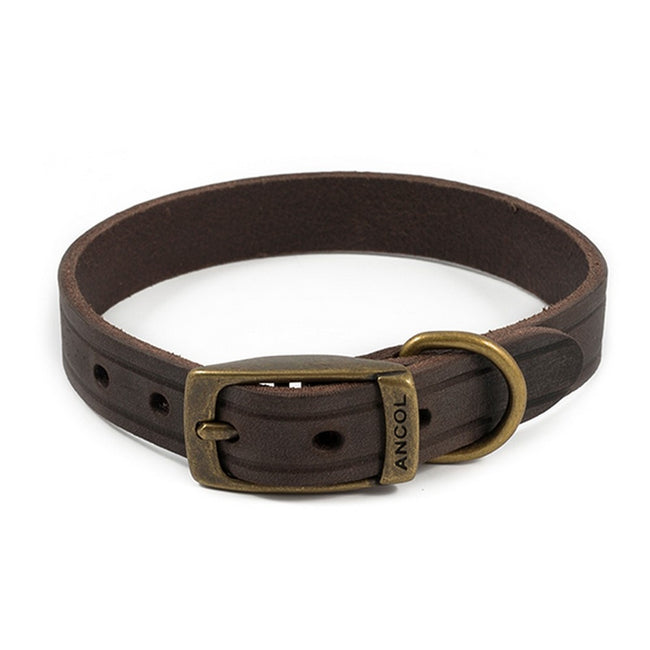Havana - Front - Ancol Heritage Latigo Leather 32mm Buckle Pet Collar