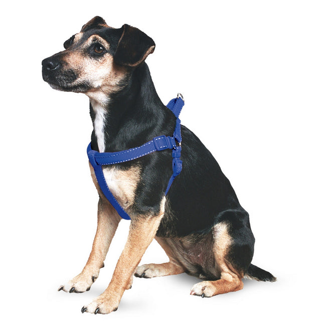 Blue - Front - Ancol Pet Products Padded Dog Exercise Harness