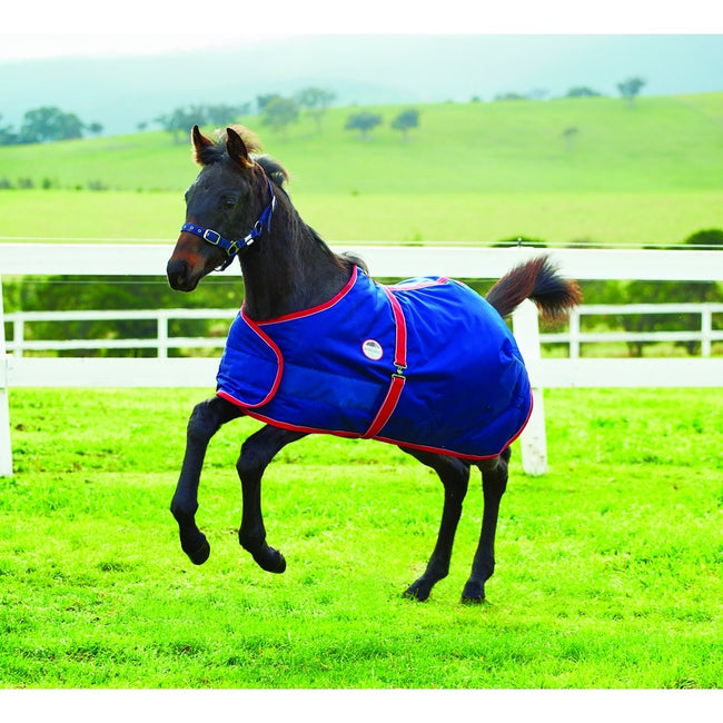Navy-Red-White - Back - Weatherbeeta 1200d Foal Standard Neck Rug