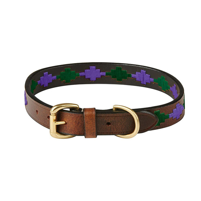 Beaufort Brown-Purple-Teal - Front - Weatherbeeta Polo Leather Dog Collar