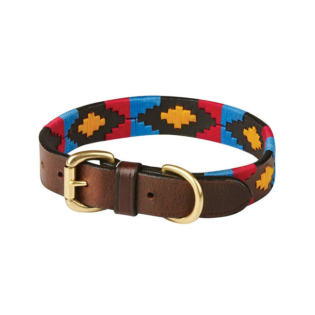 Cowdray Brown-Pink-Blue-Yellow - Front - Weatherbeeta Polo Leather Dog Collar