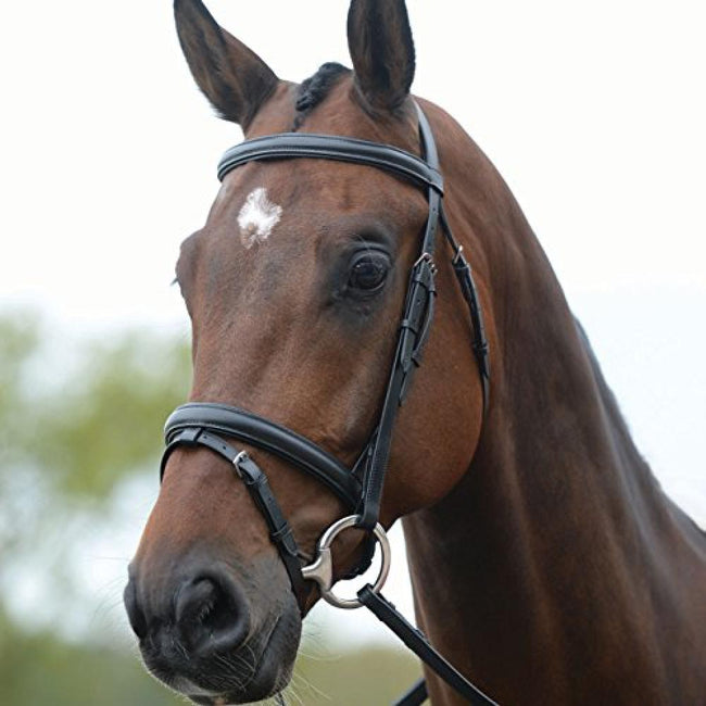 Brown - Front - Kincade Leather Flash Bridle II