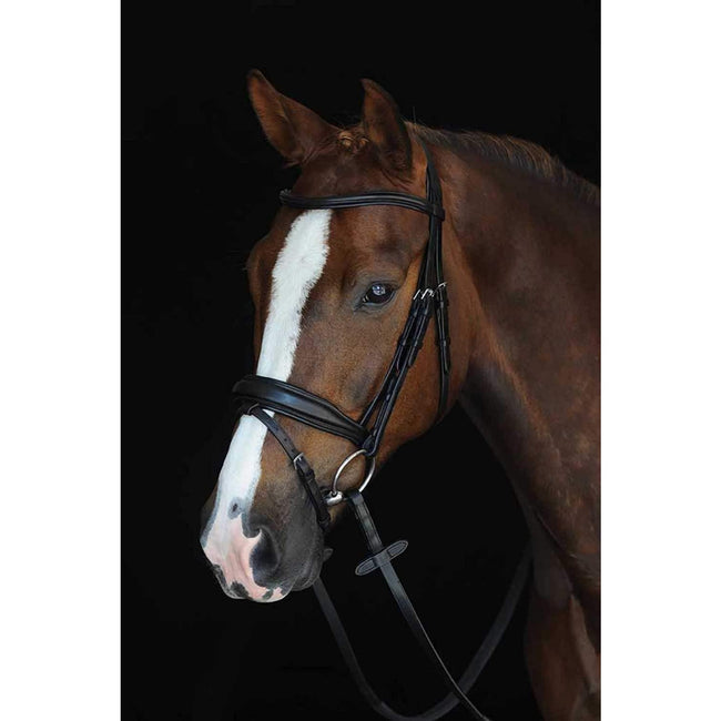 Brown - Front - Collegiate Mono Crown Padded Raised Leather Flash Bridle