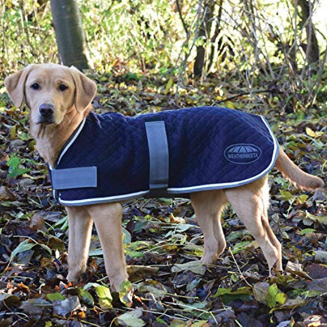 Navy-Grey-White - Front - Weatherbeeta Thermic Dog Coat