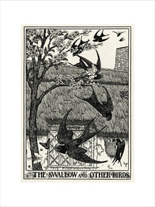 The Swallow and Other Birds