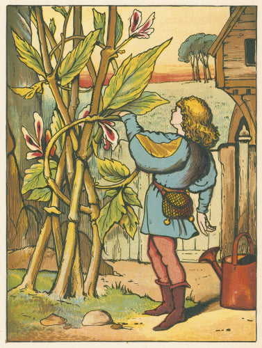 Jack decides to climb the beanstalk, from Warne's