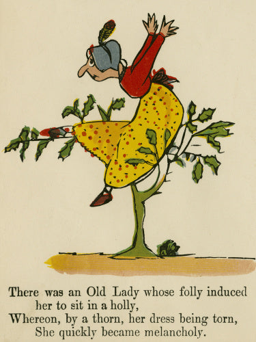 There was an Old Lady whose folly induced her to sit in a holly..'