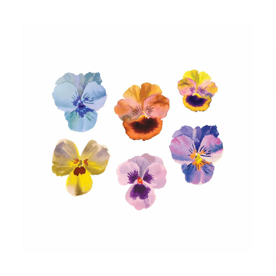 Pansies - Tattly